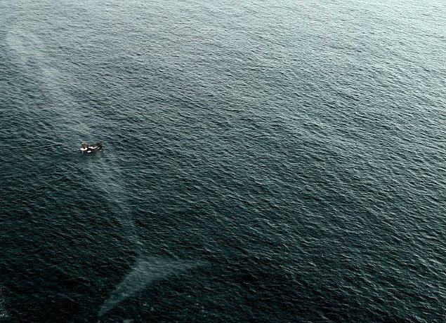 Özellikle de denizin daha koyu olduğu durumlar, bu fobinin tavan yapmasına neden olabiliyor.