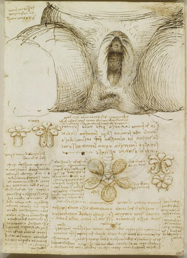 19 Drawings That Prove Leonardo da Vinci Was Way Ahead Of His Time ...