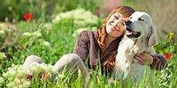 Собака - друг человека. Какой породы должен быть твой друг?