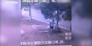 Мужчина срубил дерево, чтобы украсть велосипед