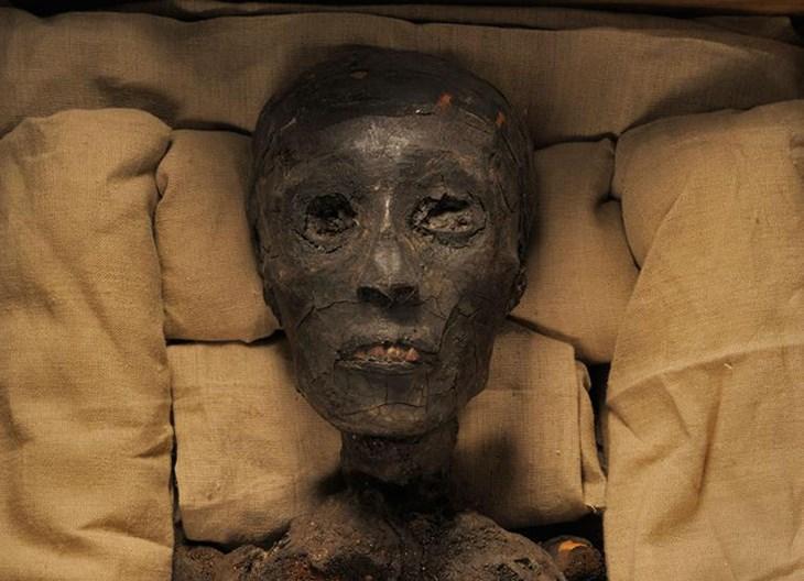 Pharaoh Amenhotep III Facts