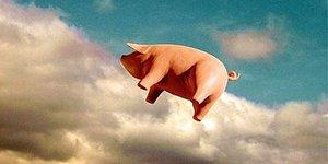 The Pink Floyd Pig Flying Over London Again After 40 Years!
