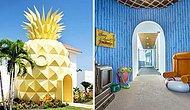 Кто проживает на дне океана или Отель-ананас в тропическом раю