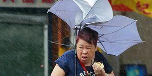 Тайваньская женщина ест булочку прямо во время смертельно опасного тайфуна