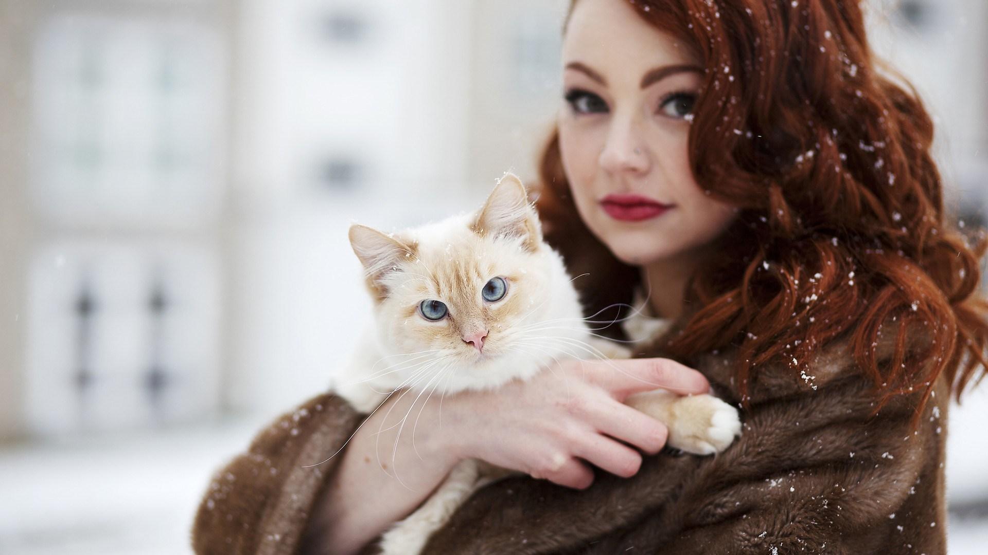 royal canin cat treats