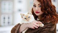 15 Things People Who Would Pick Their Cats Over Anybody Else Know