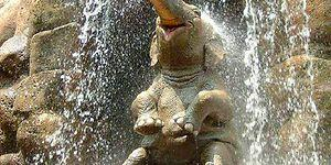 20 Cute Baby Elephants That Will Brighten Your Day!
