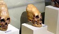 10 древних черепов, деформированных по моде