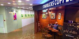 Дедушка оказался в «Старбакс» во время наводнения и тут же стал новым мемом