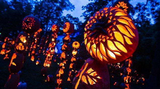 Bu amaçla 1000 yılı civarlarında kilise 2 Kasım'ı 'Tüm azizler günü' ilan etti. Böylelikle bütün ruhlar kutlanacak, Samhain'e ait tüm ayinler de birebir benimsenecekti.