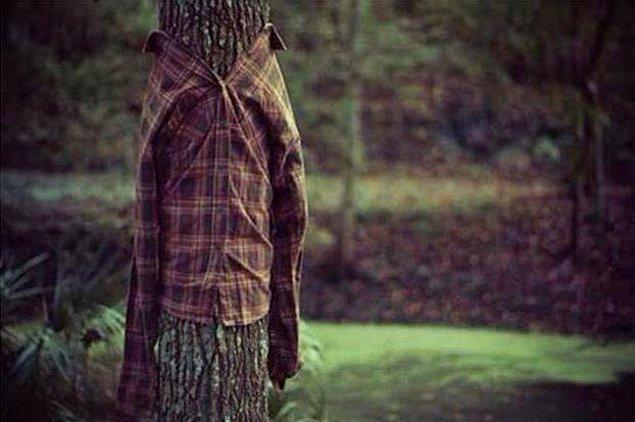 19. Odun diyenler bunu beğendi.