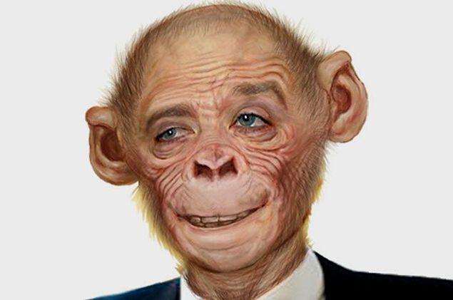 В СССР пытались создать гибрид человека и обезьяны