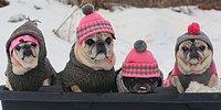 10 эффективных способов согреться в холодную погоду