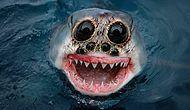 13 гибридов животных из твоих кошмарных снов