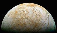 What If Europa, The Best Bet For Alien Life, Was Our Moon?