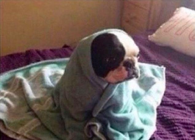 А просыпаясь на работу или на учебу, ты еще минут 10 сидишь на краю кровати и залипаешь в пустоту
