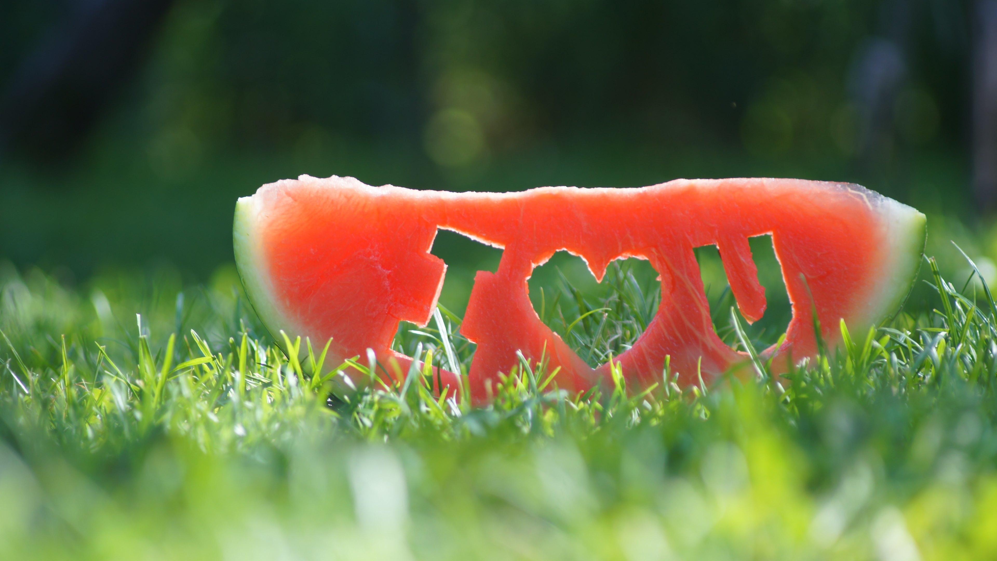 Love арбуз без регистрации