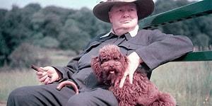 13 «если» великого человека: проверьте, соответствуете ли вы уровню, о котором писал У. Черчилль