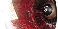 Что будет, если в двигатель самолета попадет птица?