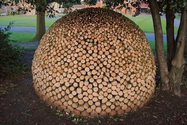 1. Odunluğun en kusursuz hali.