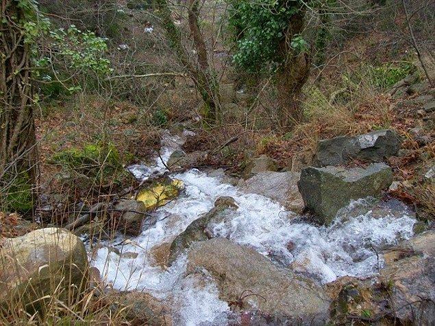 Gağgı'nın su ihtiyacı ise bin 340 metre yüksekliğinde Karlık dağının zirvelerinden gelen doğal su kaynakları ile sağlanıyor.