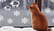 10 творческих подсказок для создания новогодней атмосферы в доме