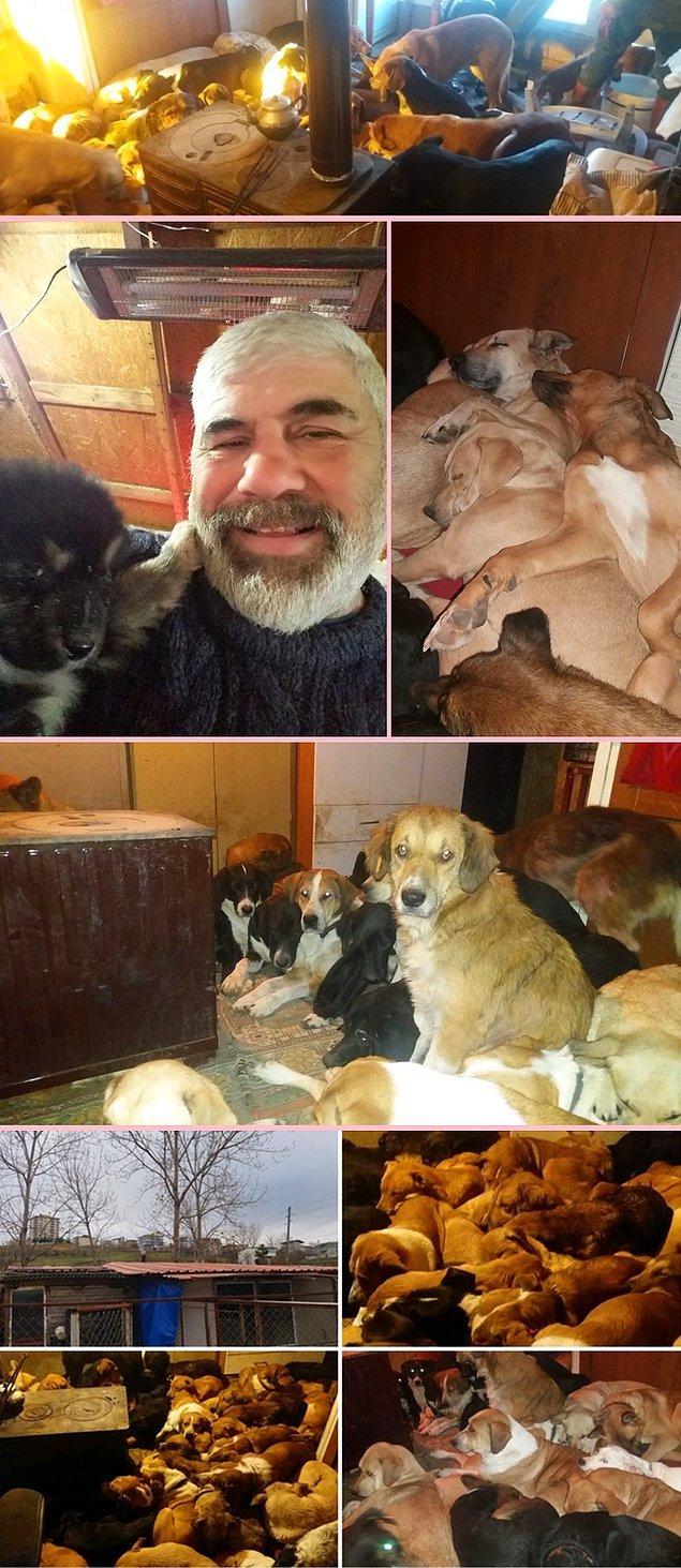 12. Samsun'da kurduğu barınak ile soğuk günlerde köpeklerin soba başında ısınmasını sağlayan Sinan Karagöz.