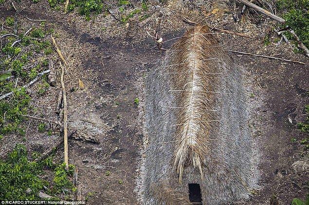 Kabile üyelerinin vücutlarını bitkilerle kapladığı ve parlak kırmızı vücut boyası kullandığı görülüyor.