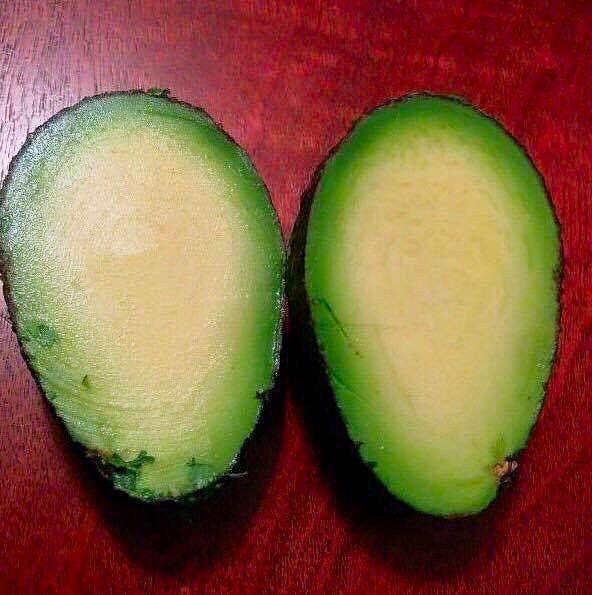 Авокадо без косточки 0_o