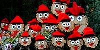 10 самых необычных новогодних и рождественских традиций со всего мира