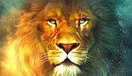 Какое ты дикое животное?