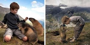 Трогательная дружба мальчика из Австралии и горных сурков из Австрии