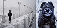 Фотографии из самого холодного места на земле, где температура достигает -71°C