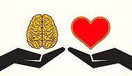 Твоя главная составляющая - логика или чувства?