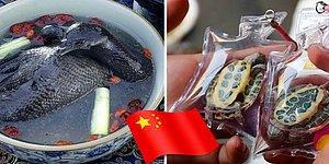 9 самых странных вещей, которые вы можете купить в Китае