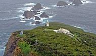 Issız Cennet: Sadece Cesur Yüreklerin Gidebileceği İş ve Ev Öneren Muhteşem Ada!