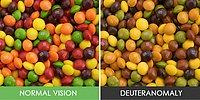 How People With Color Blindness See The World W/ 14 Pics!
