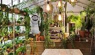 Будете в Лондоне, непременно остановитесь в этом необычном домике по Airbnb