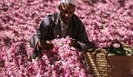 На запах: чем пахнут разные страны и города мира?