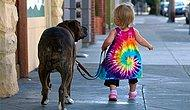 10 причин, по которым детям лучше расти вместе с домашними животными
