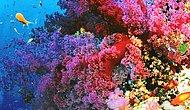 10 Most Colorful Places On This World!