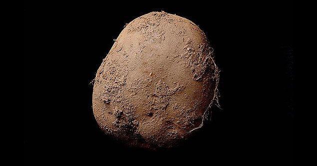 Tabii beğenmekle kalmayıp, istiyor da. İki hafta içinde bir fiyat etiketi belirleniyor ve Fransız iş adamı 1.5 milyon dolara Potato #345'e sahip oluyor.