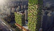 Çin'de Her Gün 43 Metreküp Oksijen Üretecek Asya'nın İlk Dikey Orman Kuleleri