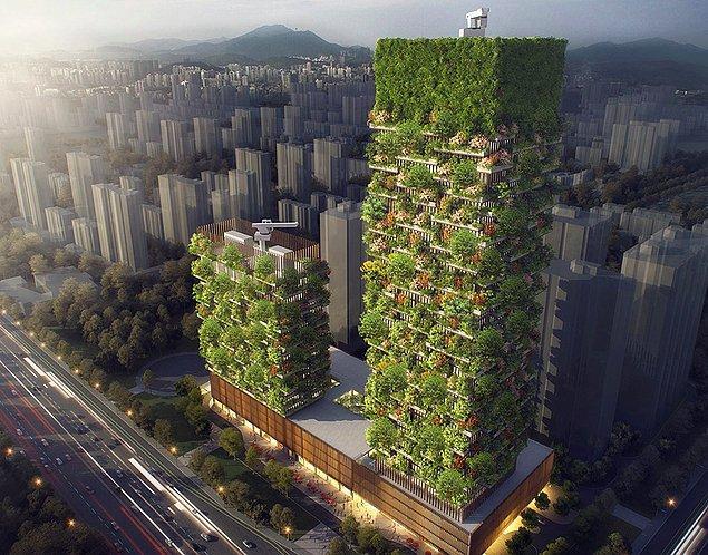 Çin'in Nankin şehrinde inşa edilmekte olan bu 'dikey ormanlar' günde 42 m3 oksijen üretecek.