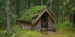 Скандинавская философия глубокого погружения в природу: Friluftsliv
