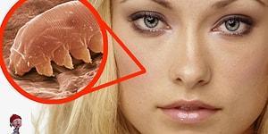 Лицо под микроскопом! 8 фактов о лице, которые вы не знали
