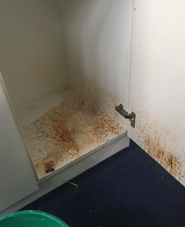 7. Sınıf dolabının gizemini koruyan iç kısmını temizlemek...