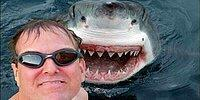 Жуть: 25 самых опасных селфи в мире
