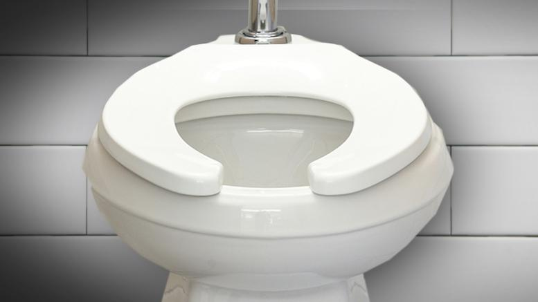 Why Do Some Public Toilets Have U-Shaped Lids? - onedio.co