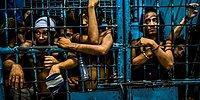 Победители конкурса World Press Photo 2017: этот безумный, безумный мир